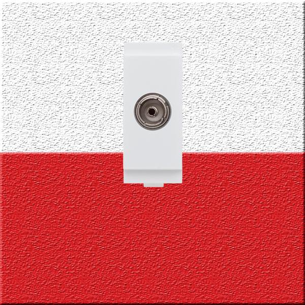 TV Socket - 222 600
